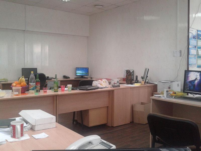 найди-ката-в-офисе-2