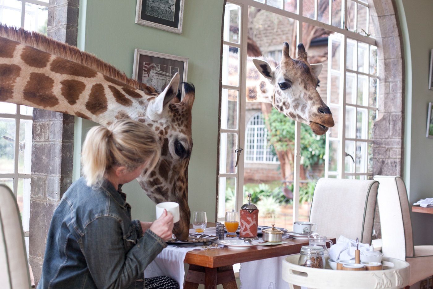 Giraffe Manor_1.jpg