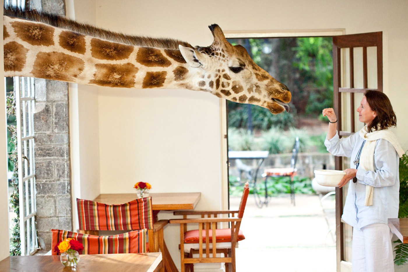 Giraffe Manor_10.jpg