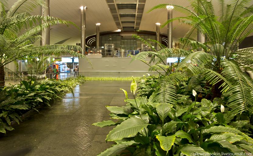 dibai_airport_garden_832