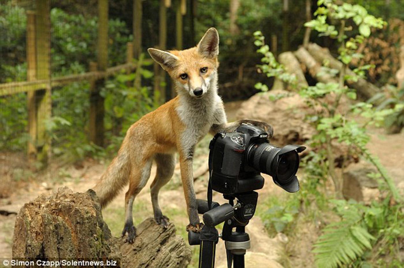 Пост ко дню фотографа: Моя жизнь – приключение