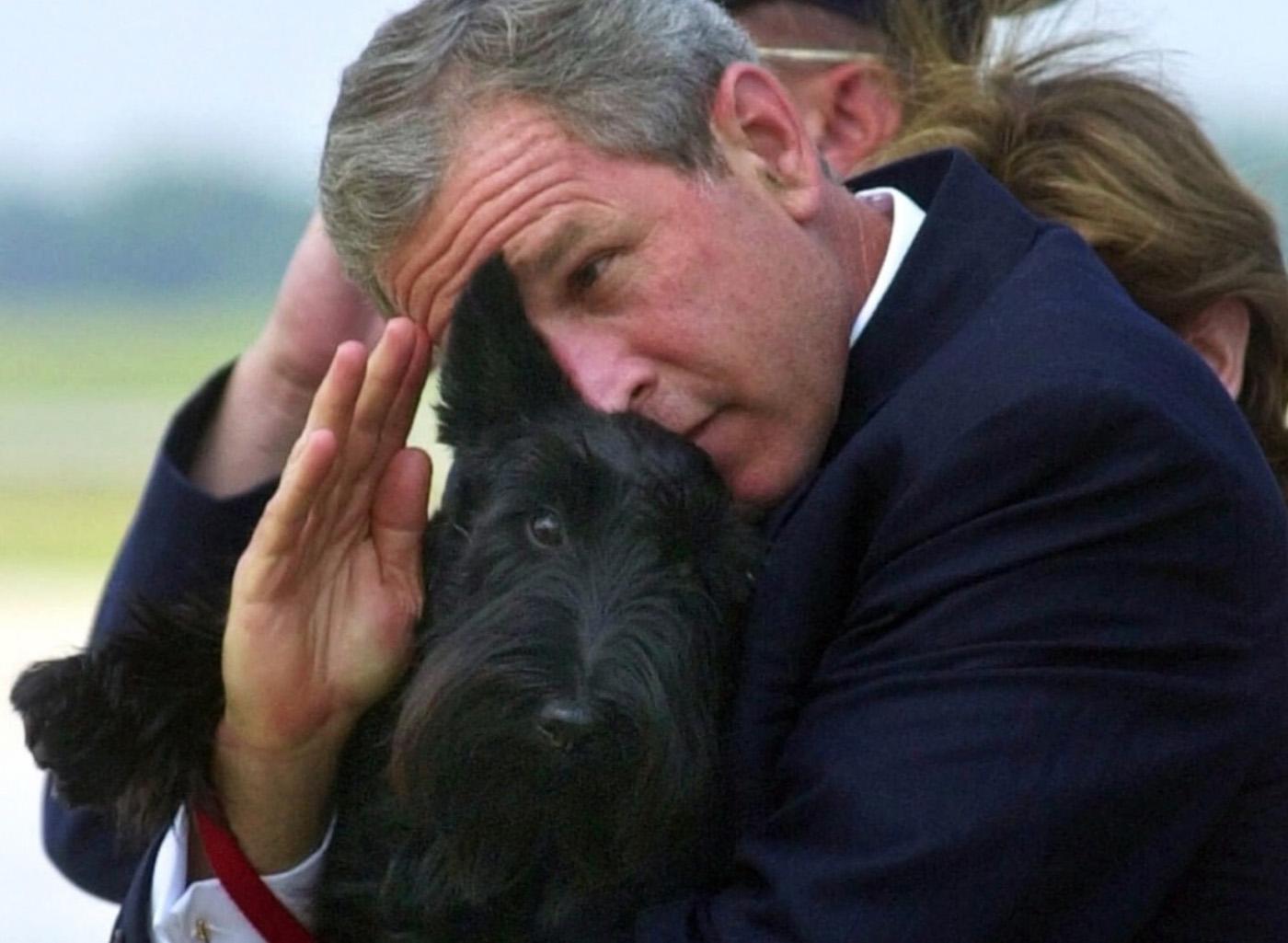 Животные из Кремля и Белого дома