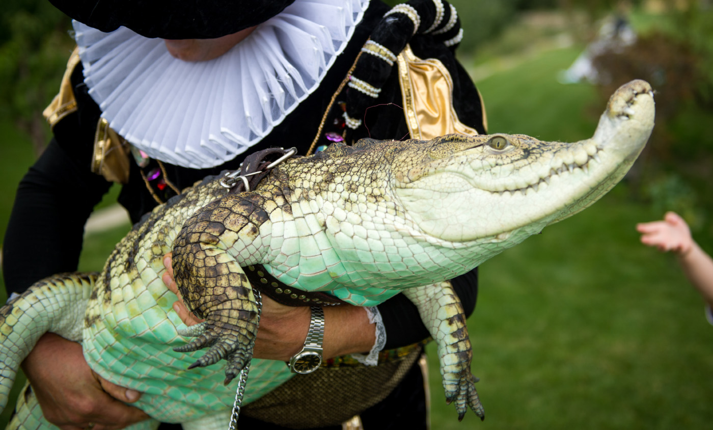 Московский зоопарк защитит любителей животных нетрадиционных взглядов