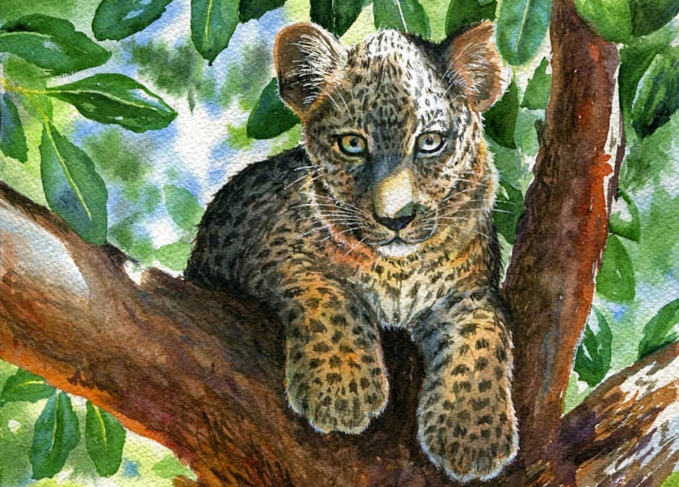 Как леопард Поли из Масаи-Мара стала звездой в России