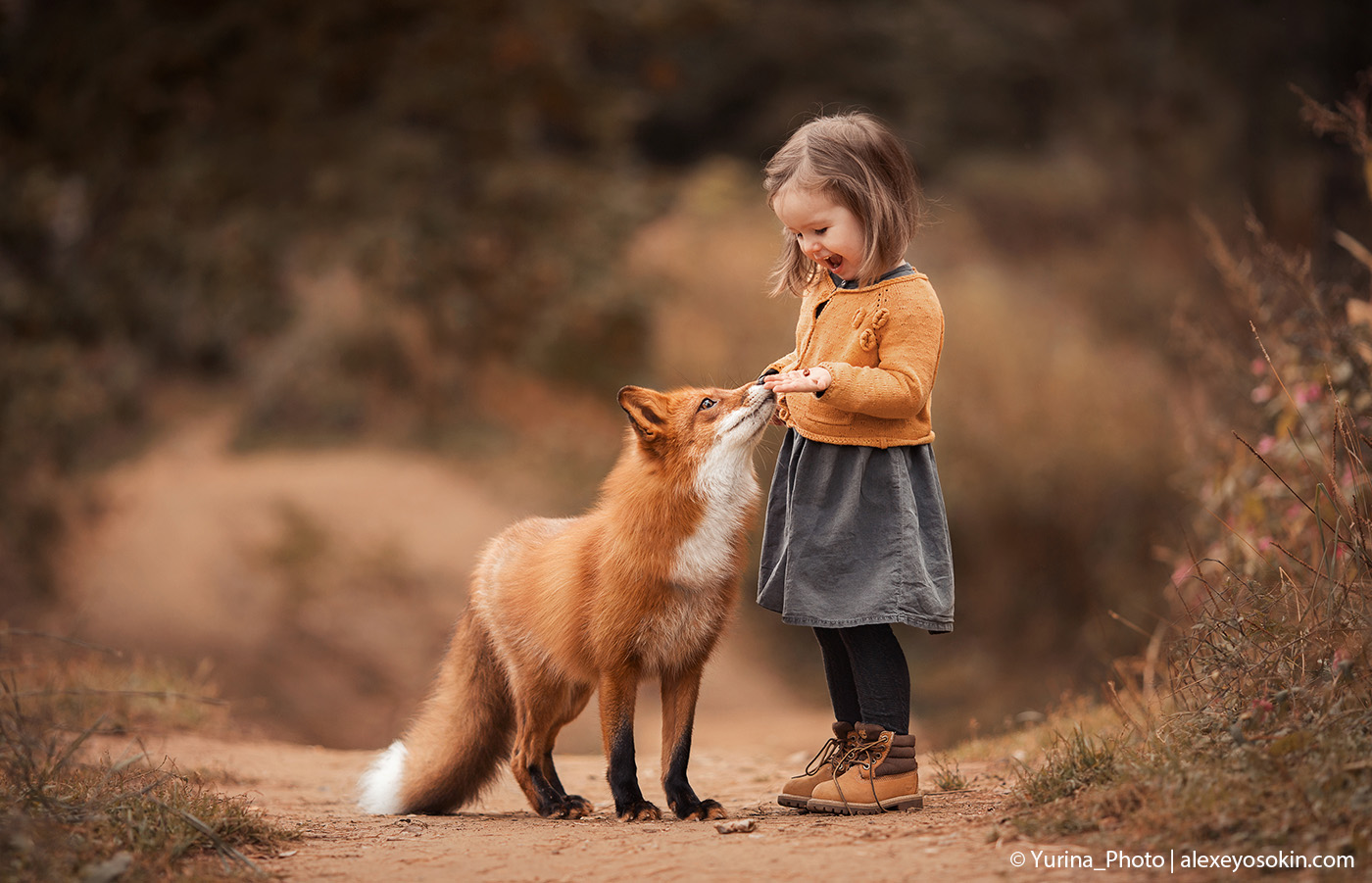 fox and girl.jpg