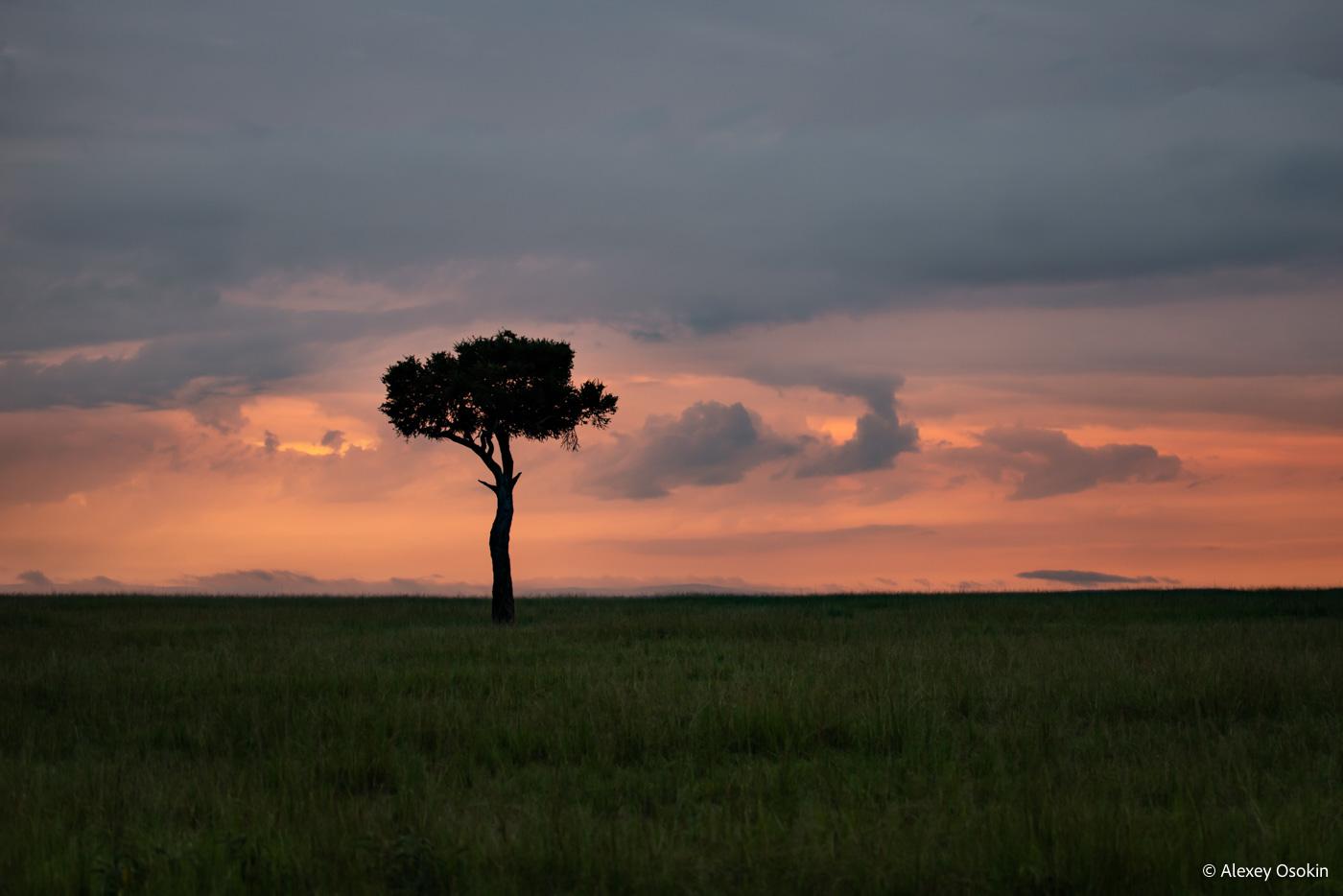 Невероятные африканские закаты