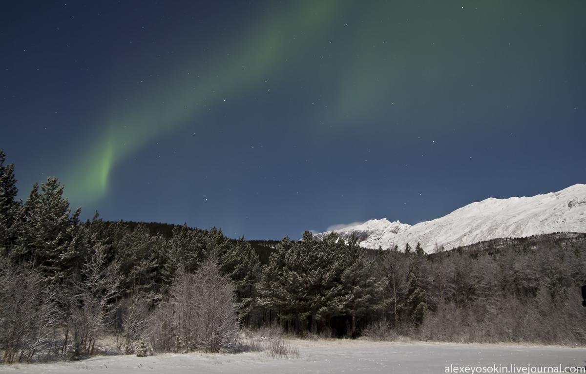 aurora_new_1_lj