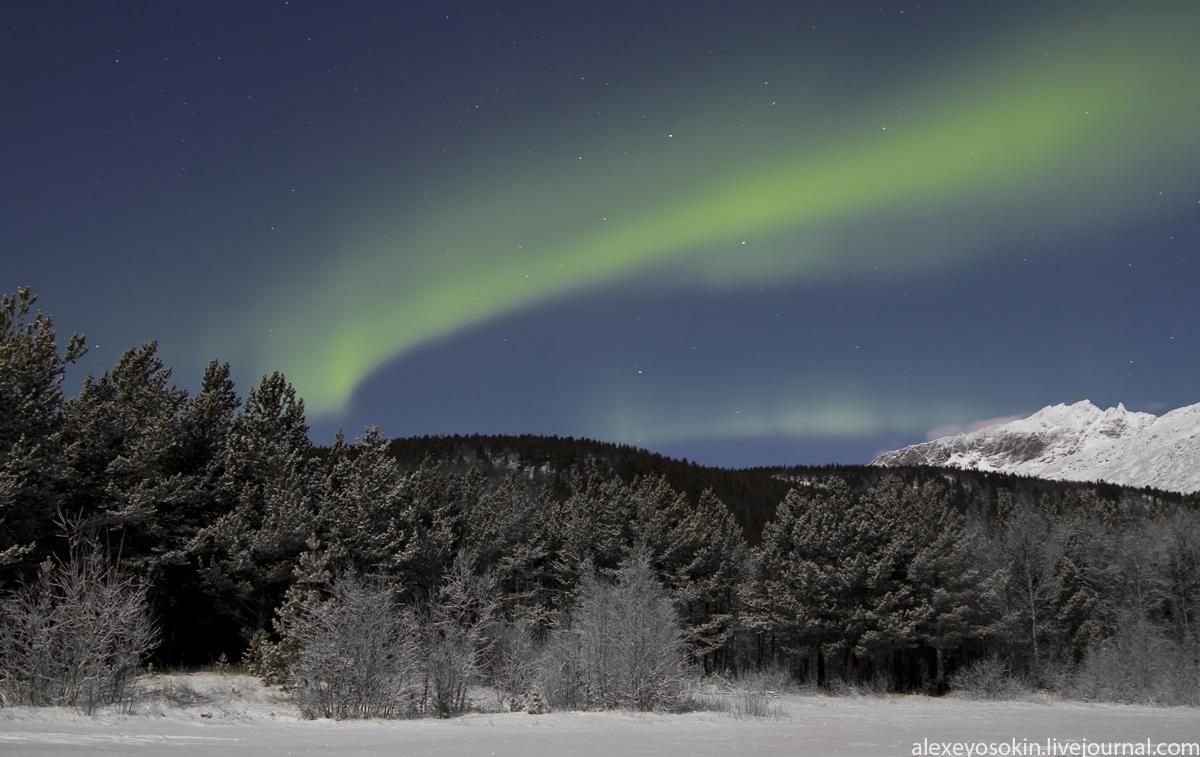 aurora_new_2_lj