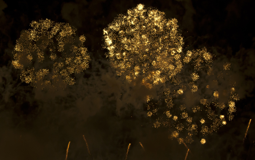fireworks_01.05.12_2