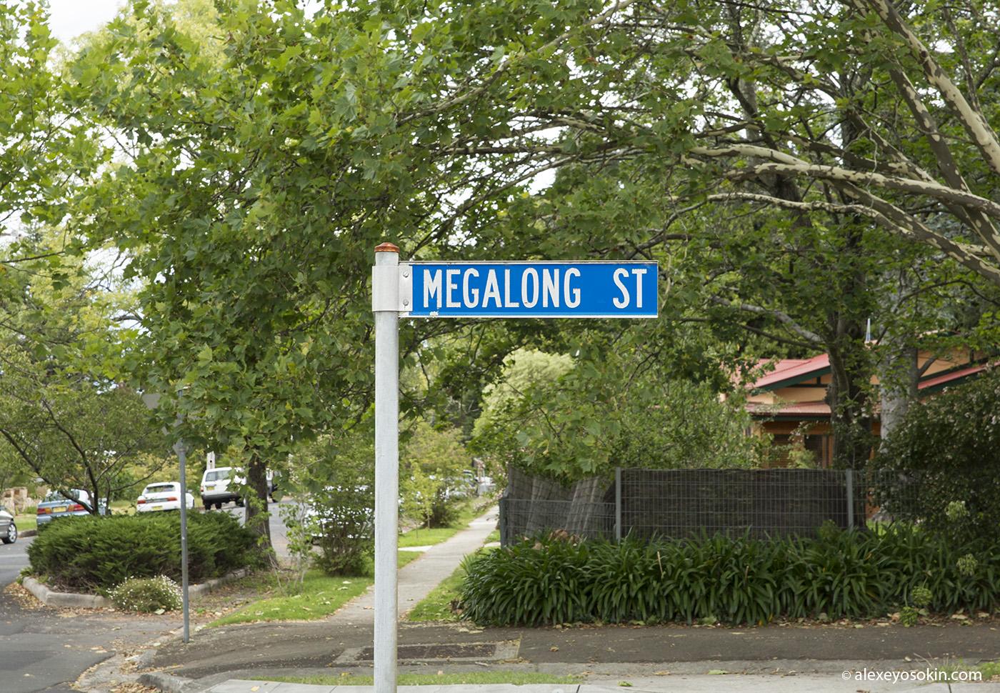 megalong_street_2_ao