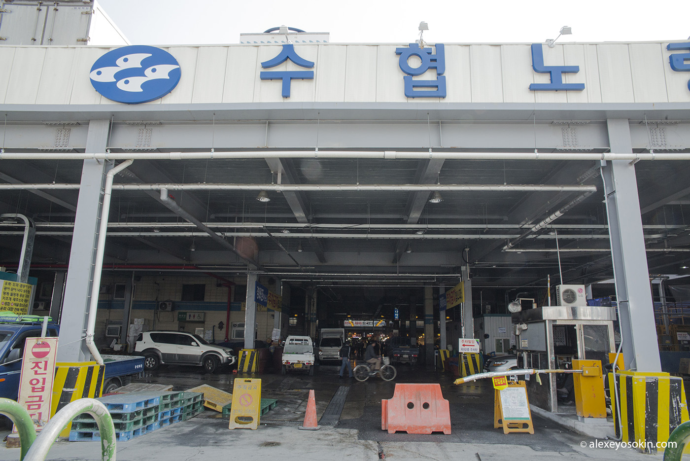 seoul_fish_market_2_ao