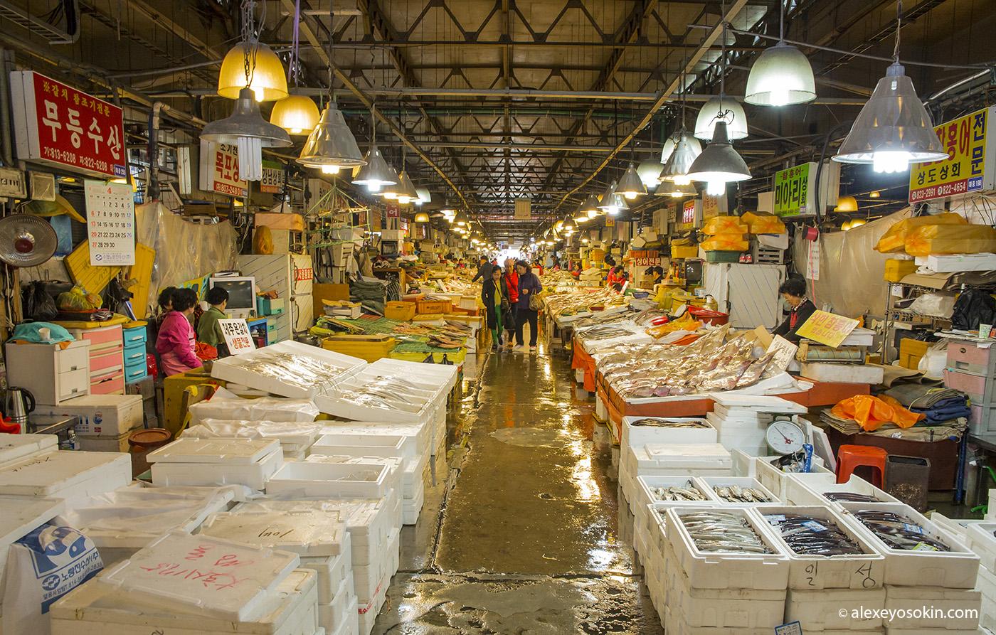 seoul_fish_market_1_ao