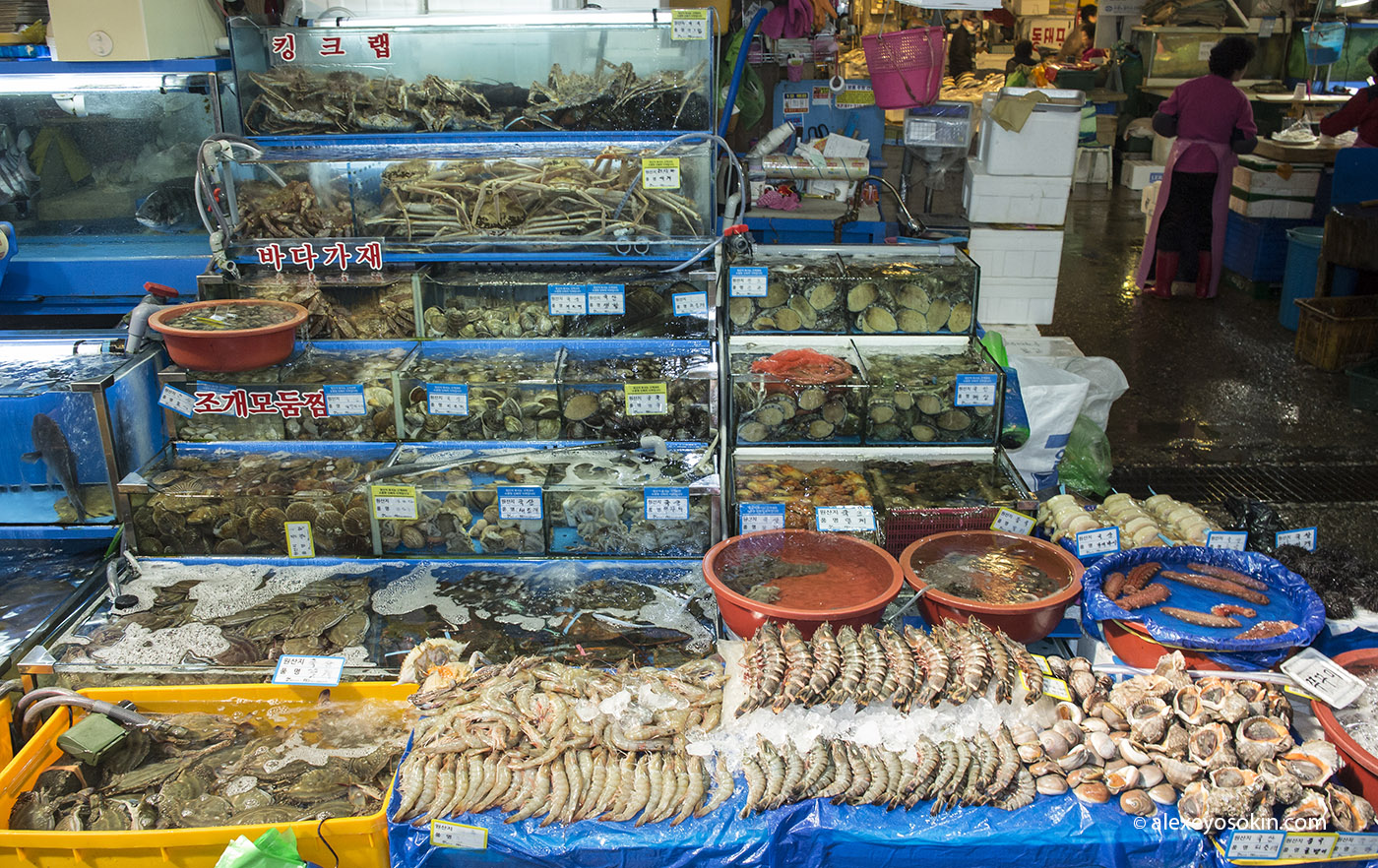 seoul_fish_market_5_ao