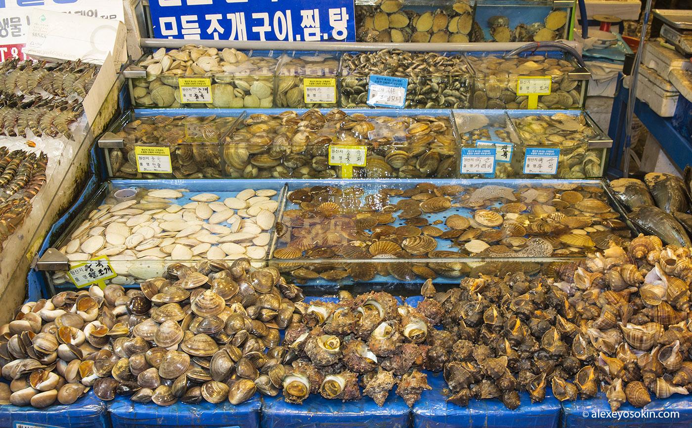 seoul_fish_market_8_ao