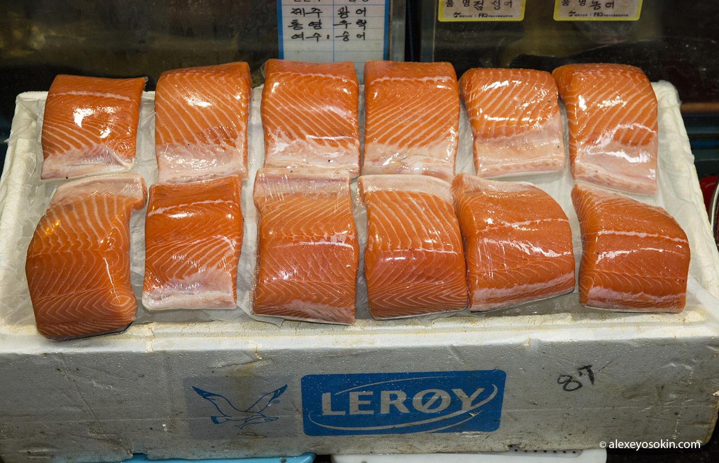 seoul_fish_market_11_ao