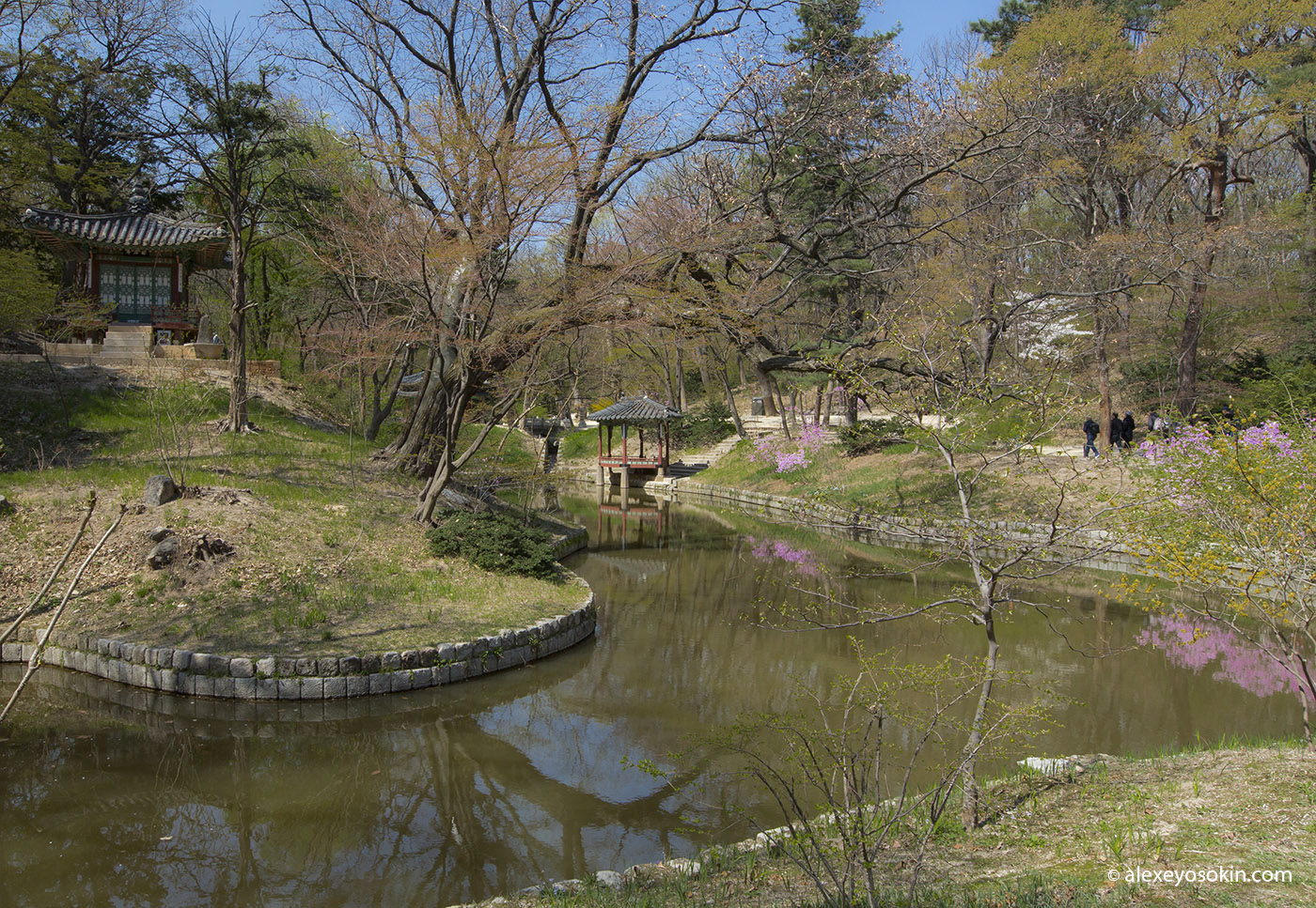 secret_garden_1_ao