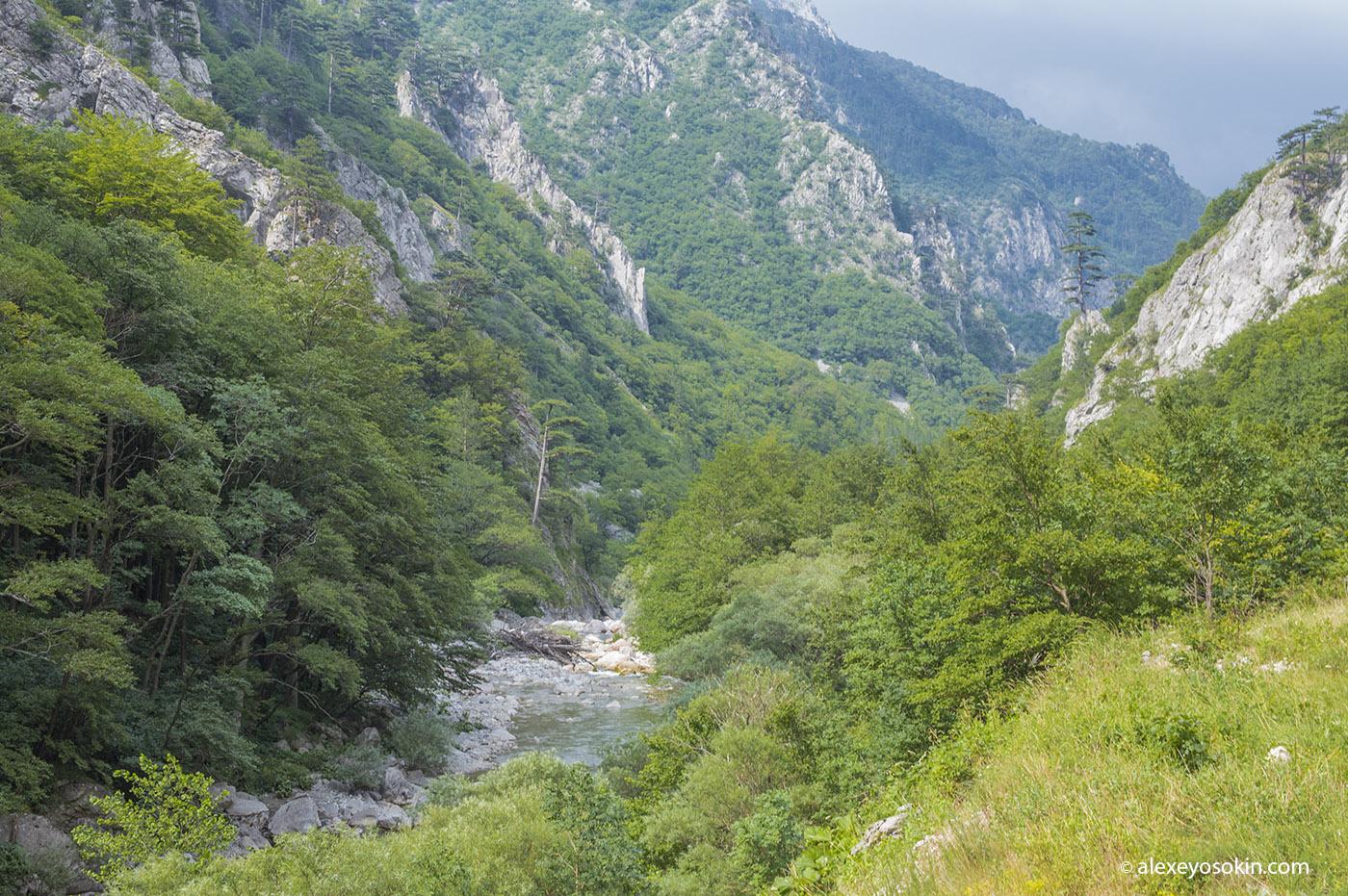bosnia_5_ao