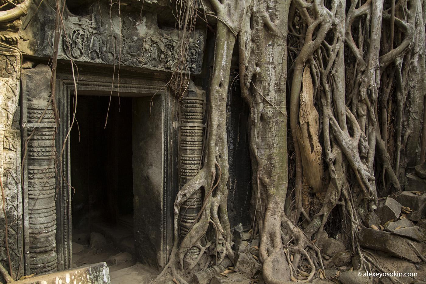 cambodia_16_ao