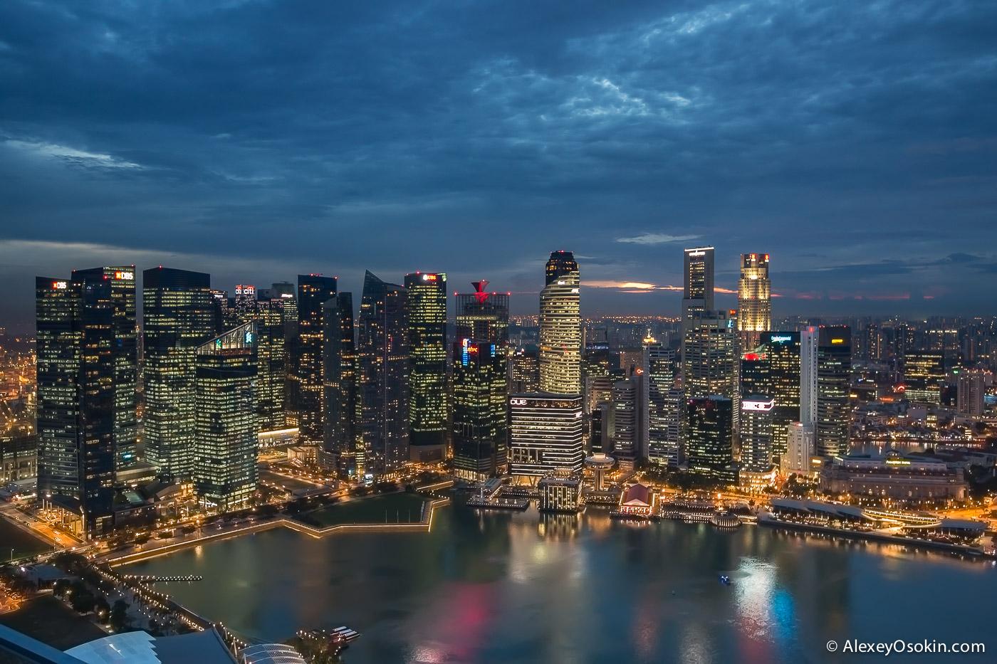 singapore2015_-2.jpg