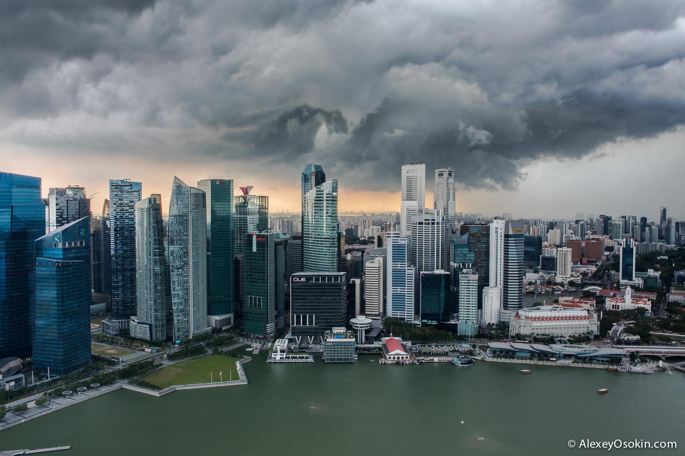 singapore2015_1.jpg