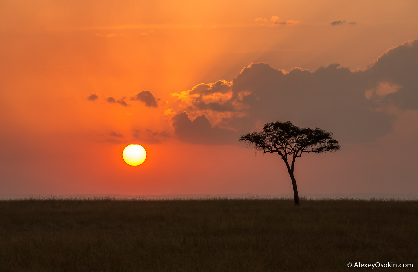kenya - sunsets-ao, aug.2015-2.jpg
