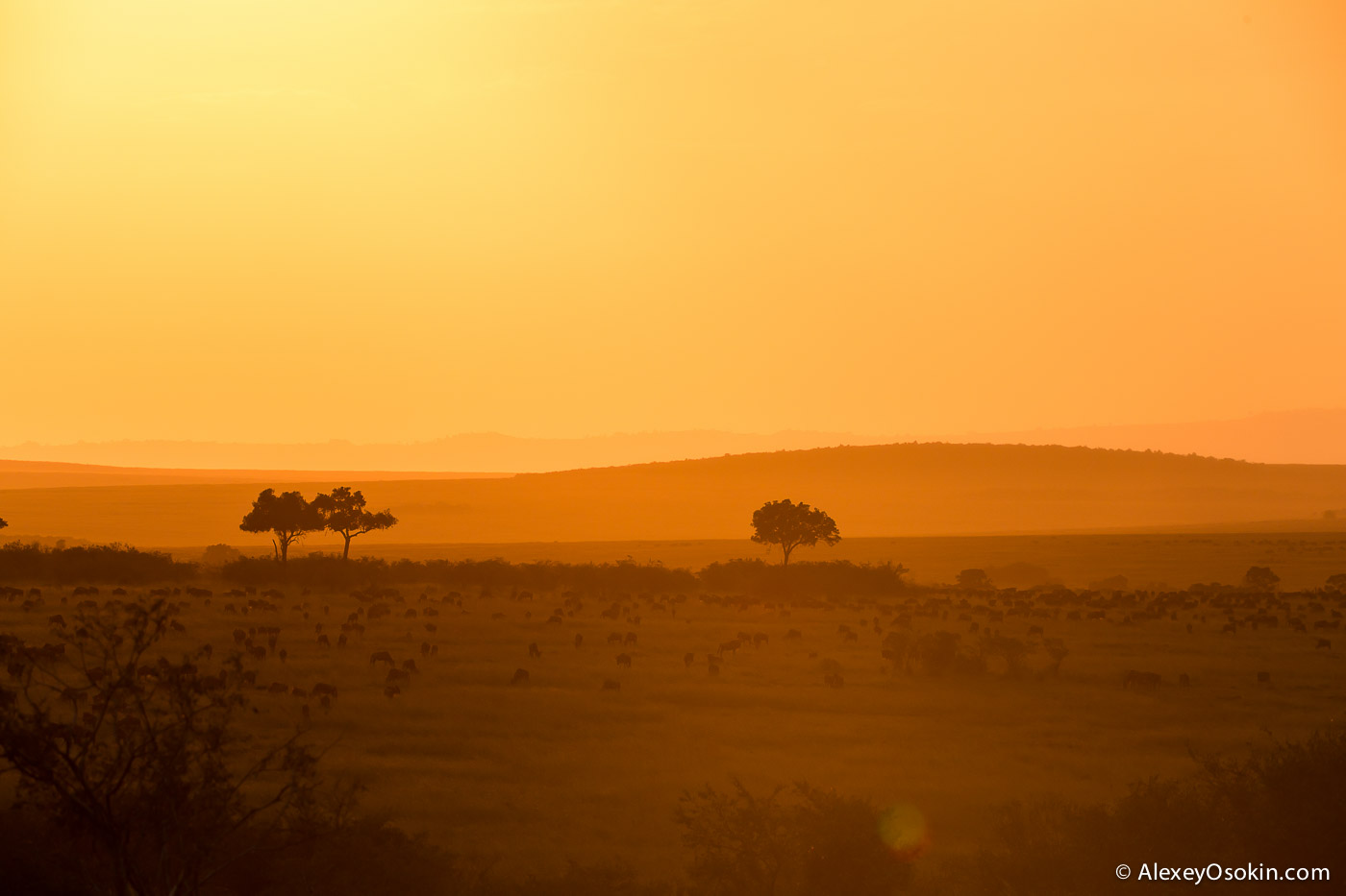 kenya - sunsets-ao, aug.2015-4.jpg