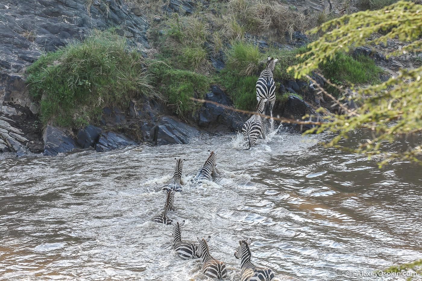 kenya-migration-ao, aug.2015.jpg