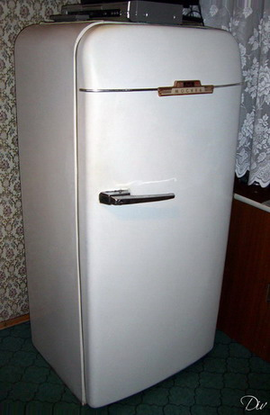 zil-fridge