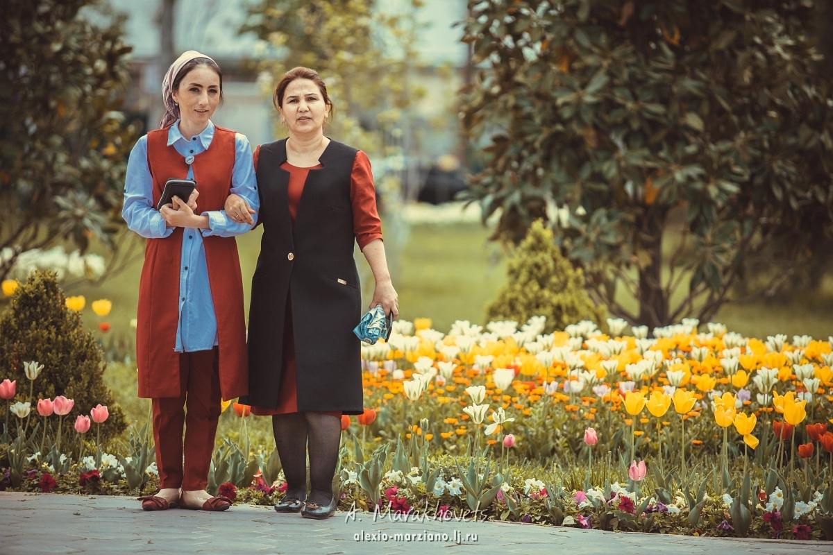 Средняя Азия, Middle Asia