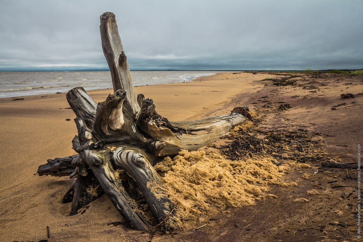 Ворзогоры, Онега, Белое море
