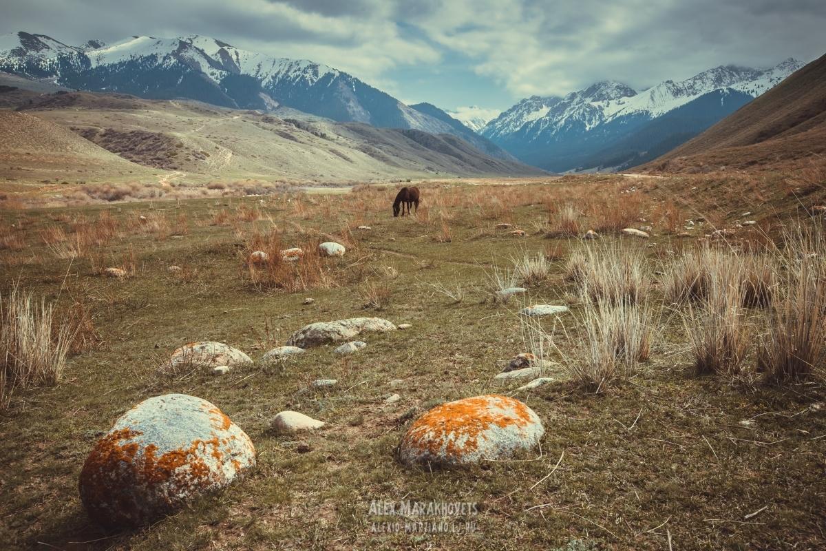 киргизия, иссык-куль, чон-кызыл-суу