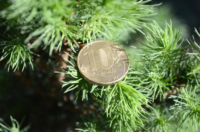 Привет рублю из 2016 года...