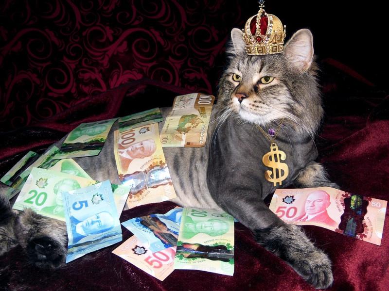 И все-таки россиян избавят от валюты...
