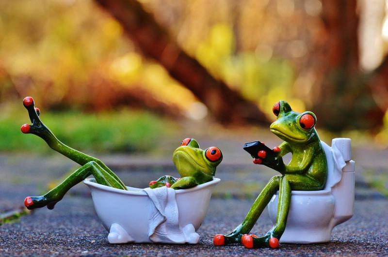 Совместить несовместимое. Зачем люди объединяют туалет и ванную?