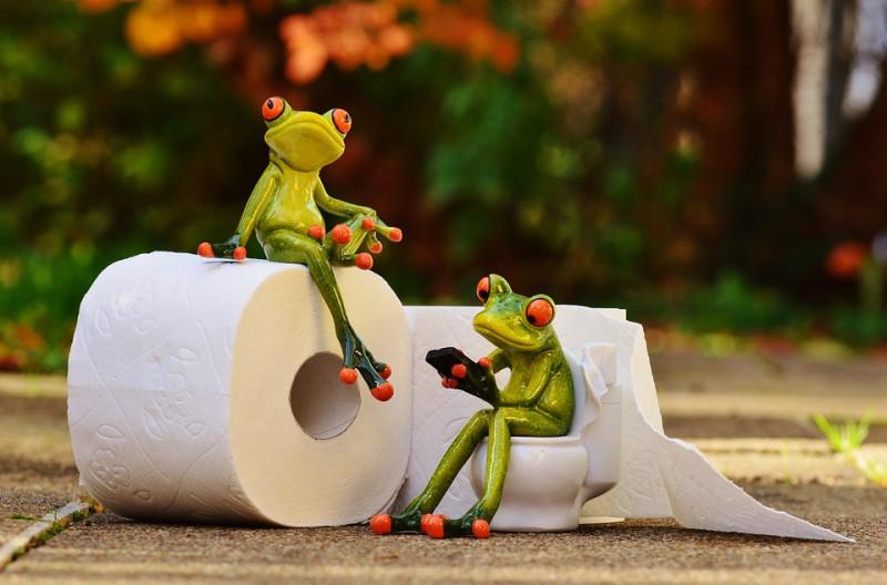 Мягкая как пёрышко, или какую опасность несёт в себе обычная туалетная бумага