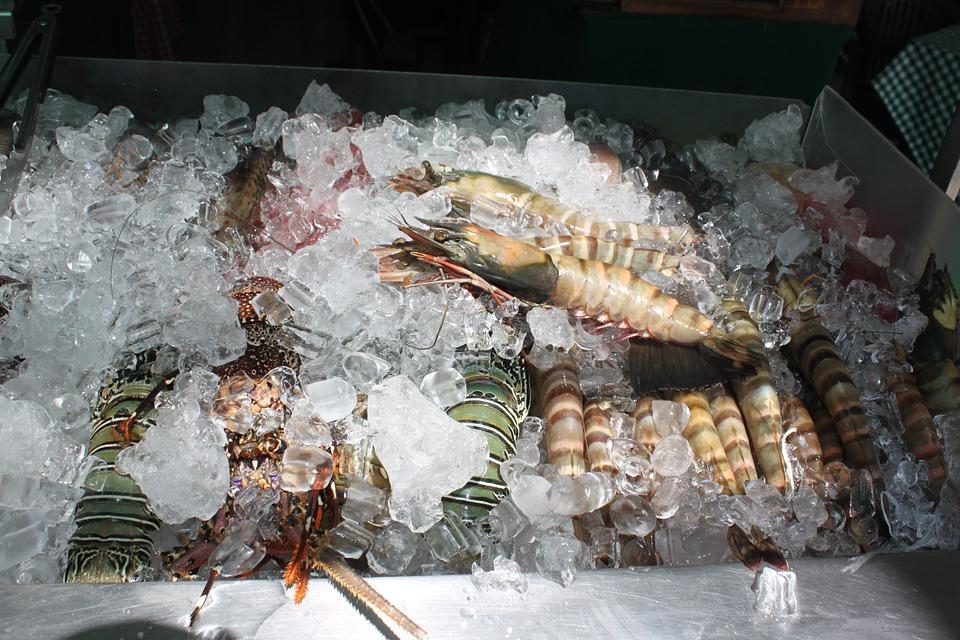 shrimp-1019528_960_720