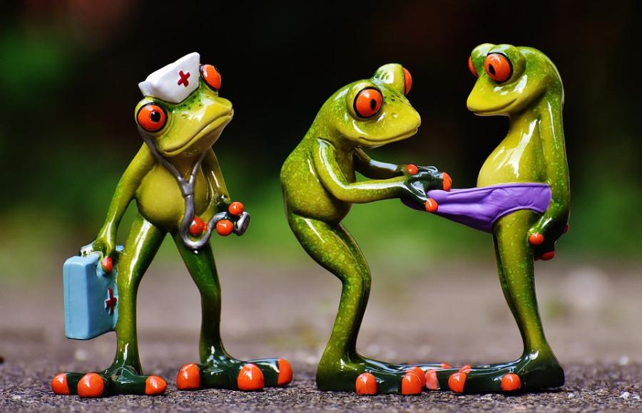 Здоровье россиян хотят доверить врачам-мигрантам frogs-1672890_960_720