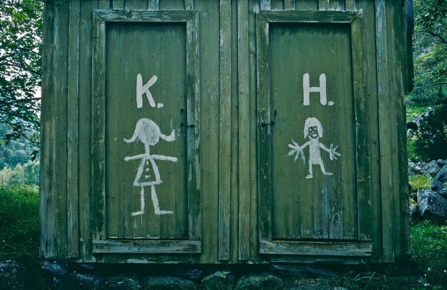 toilet-2586171_960_720