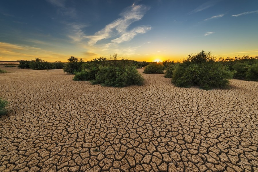 drought-1675729_960_720