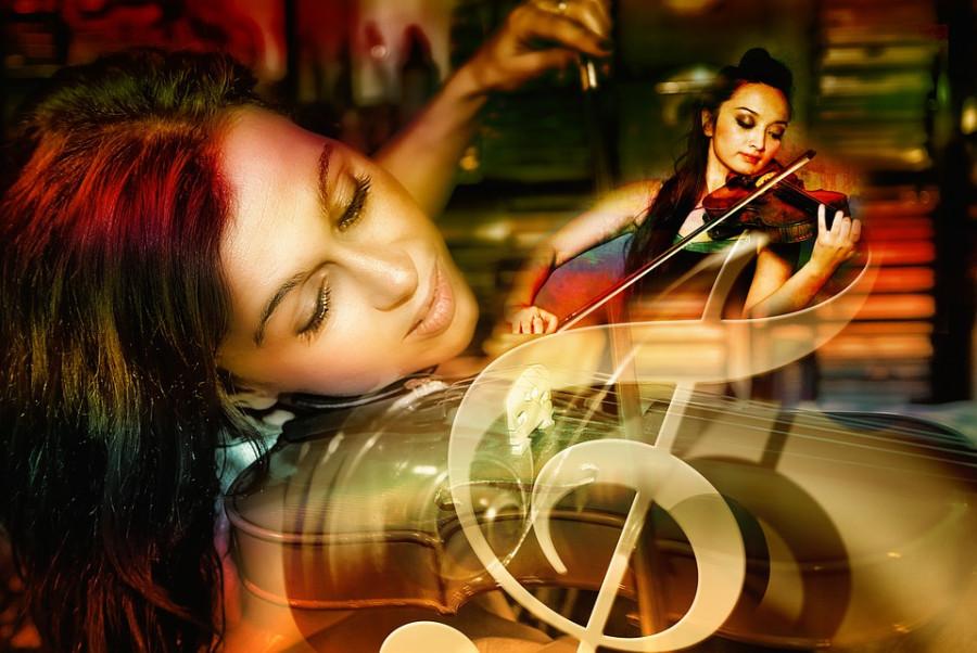 violin-3338113_960_720