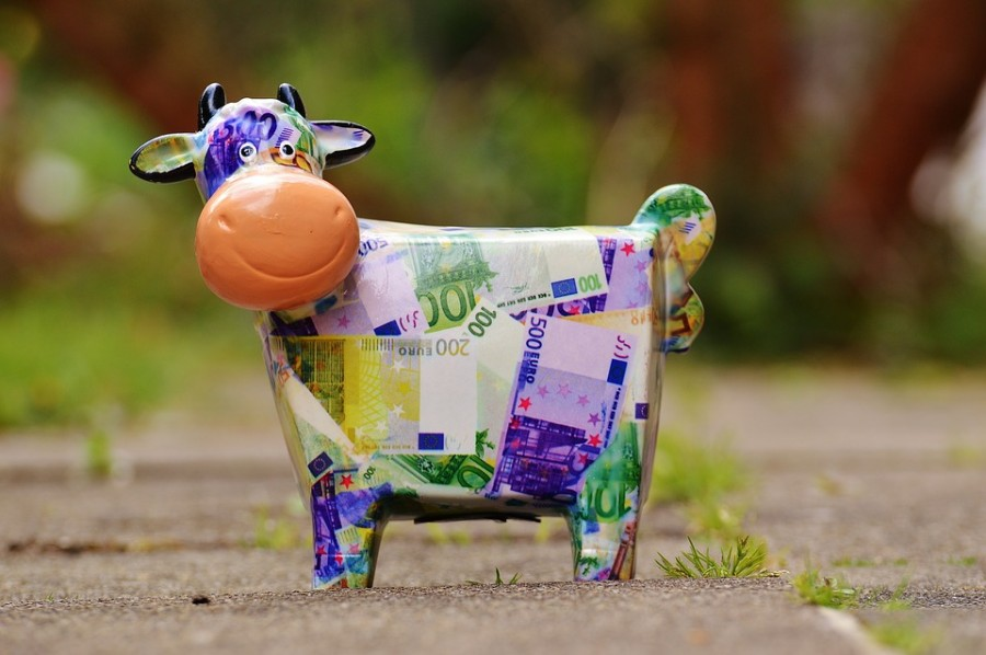 cow-1357210_960_720