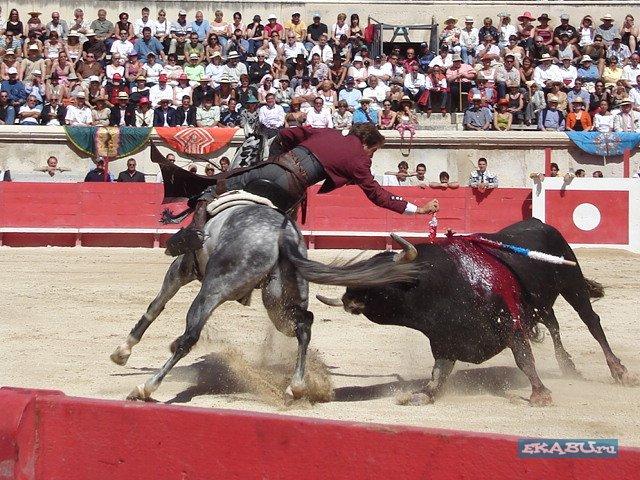последняя коррида в Испании