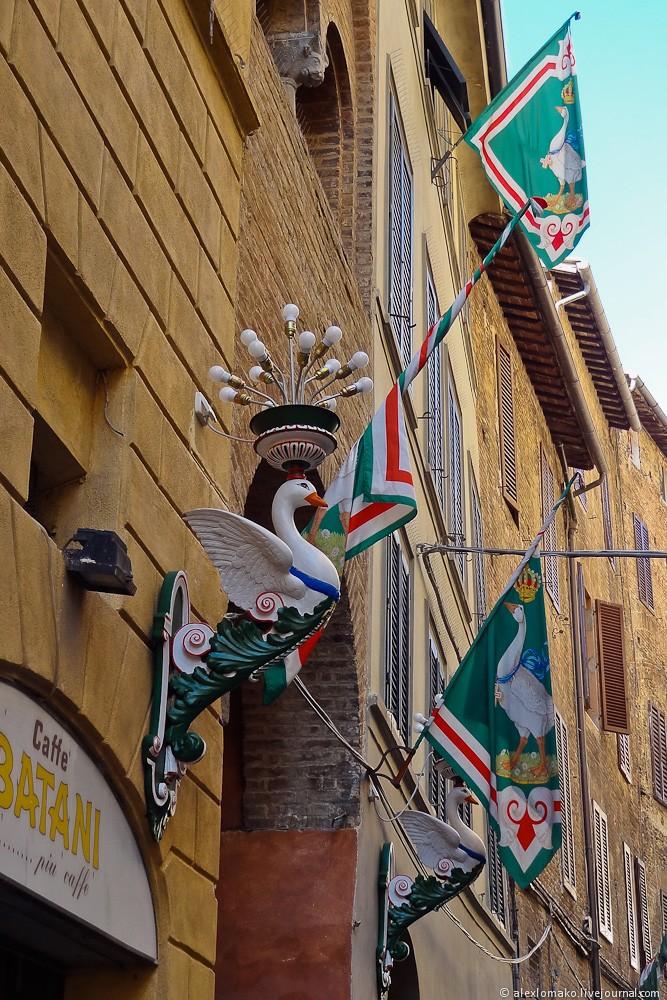 031_Italy_Siena_037.jpg