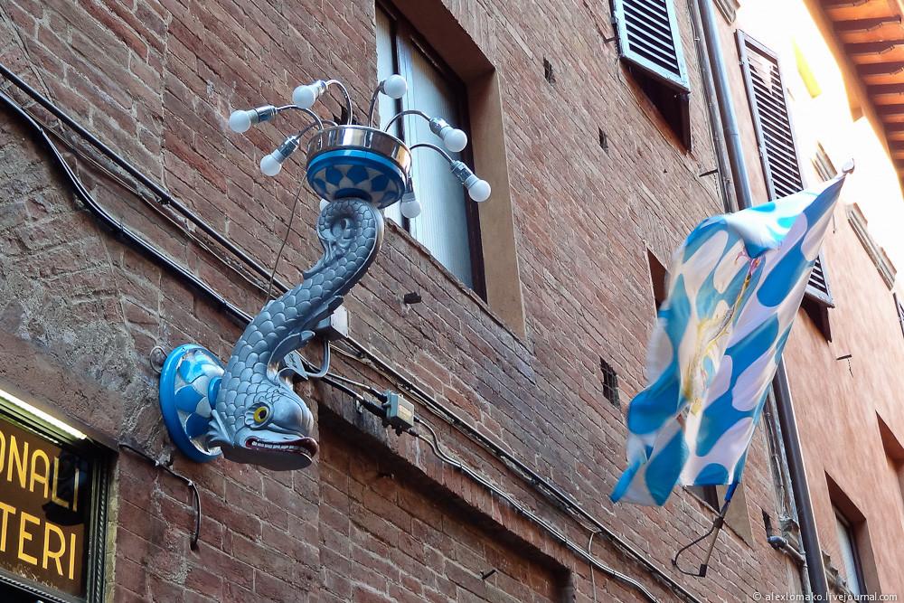 031_Italy_Siena_038.jpg