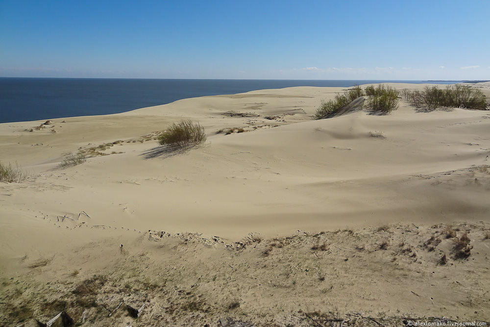 038_Russia_CuronianSpit_004.jpg