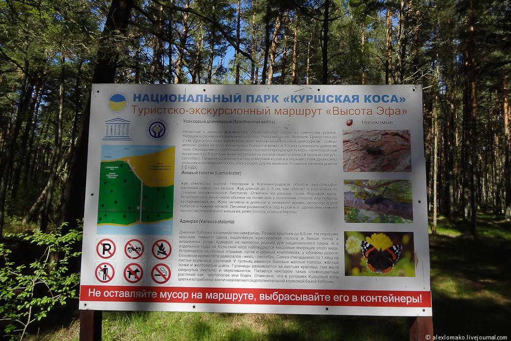 042_Russia_DuneEfa_003.jpg