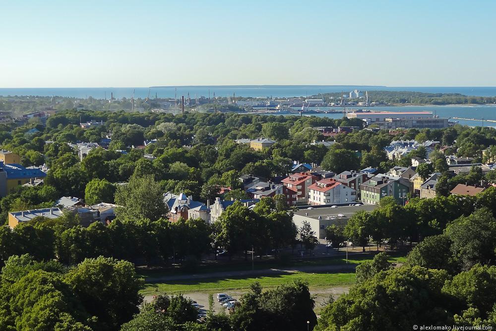 051_Estonia_Tallinn_Oleviste_020.JPG