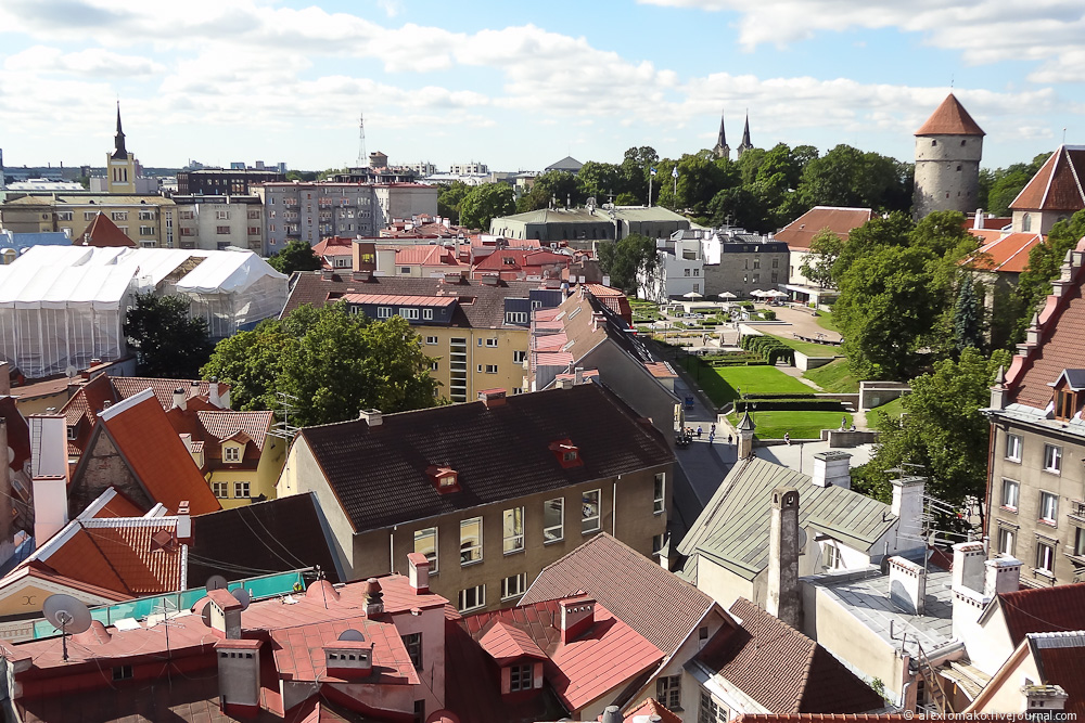 052_Estonia_Tallinn_Guildhall_018.jpg