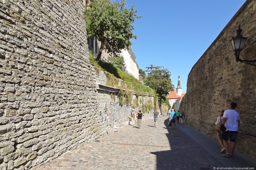 054_Estonia_Tallinn_Vyshgorod_024.JPG