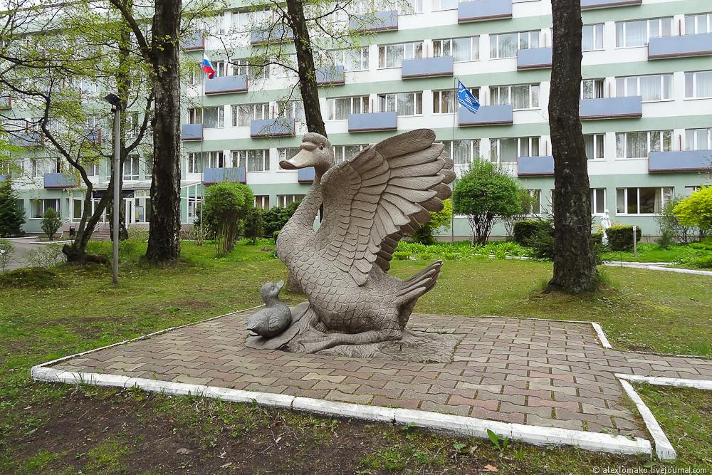 058_Russia_Svetlogorsk_039.jpg